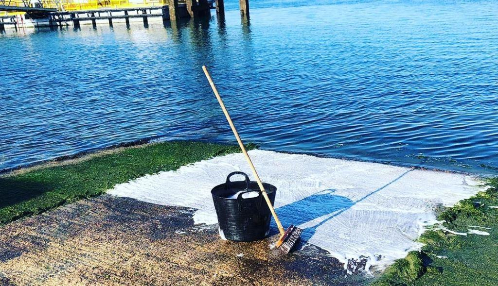 Marine algae cleaner
